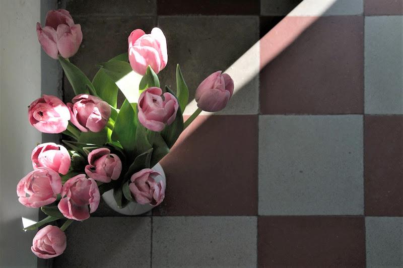 Spiragli di primavera di emanuela_terzi