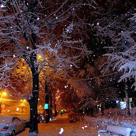 by Izvorul Muntelui Bicaz - City,  Street & Park  Night