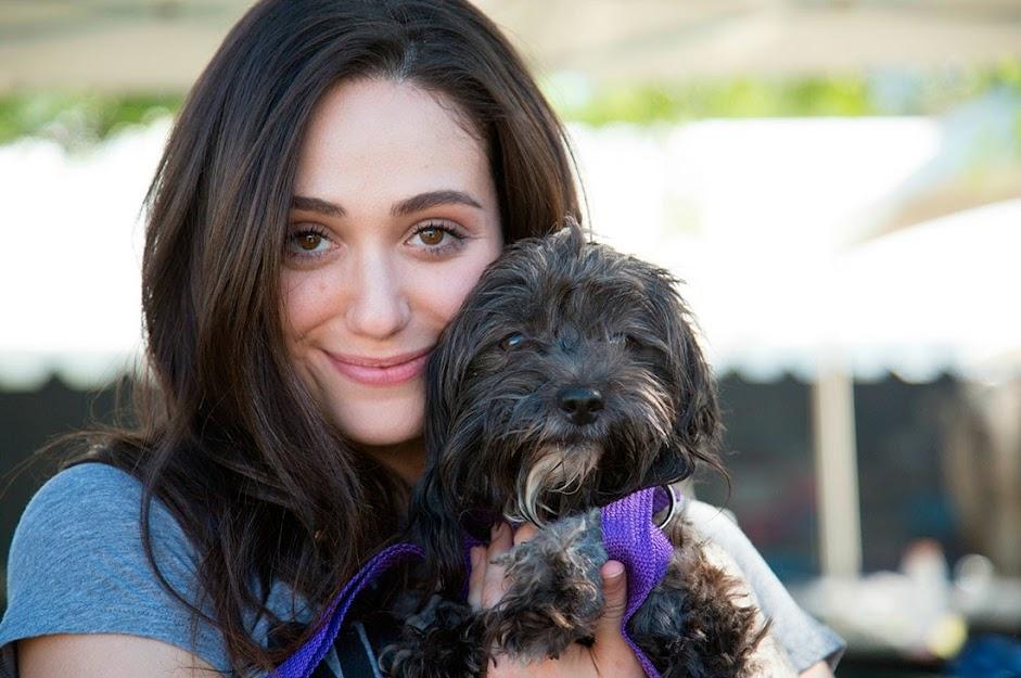 Perros acogidos por famosos:  Emmy Rossum y Cinnamon, Sugar, Pepper y Fiona