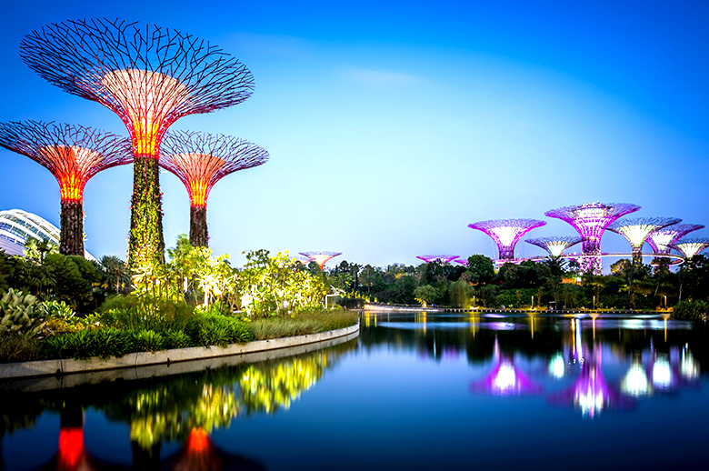 gardens by the bay flyspaces