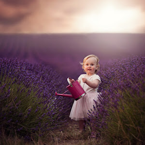 Booth-Family-Hitchin-Lavender-July-2015-(207).jpg