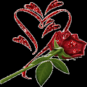 Red Shine Rose LWP icon