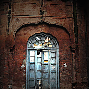 The Lost Heritage  by Satminder Jaggi - Buildings & Architecture Other Exteriors ( old, lost, punjab, heritage, gate, abandoned, building )