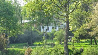 Photo: Blick von der Straße in den Garten