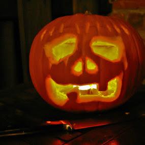 Glow by Steve Weston - Public Holidays Halloween ( holiday, orange, pumpkin, halloween )