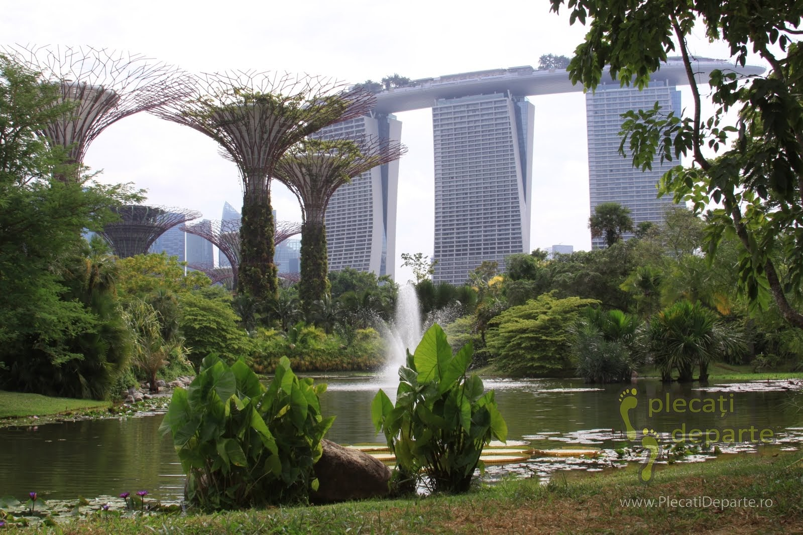Singapore obiective turistice - Gardens by the Bay Singapore - Supertree Grove si Hotel Marina Bay Sands