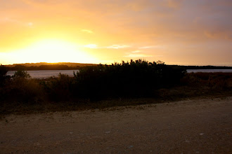 Photo: Year 2 Day 226 - Sunrise at The Loop, on The Coorong, Where We Camped