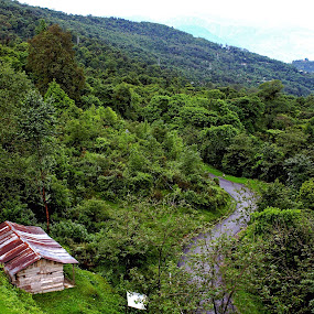 ravangla-sikkim by Sonali Majumder - Landscapes Mountains & Hills