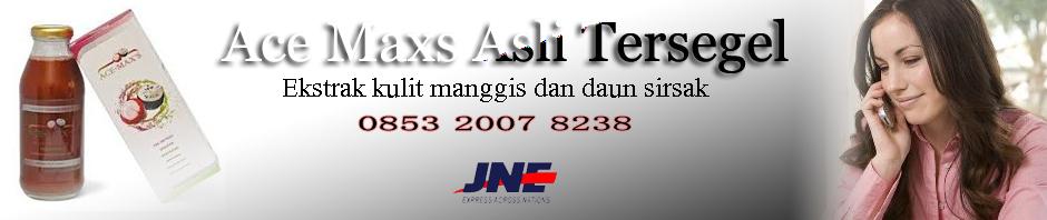ace maxs banner.jpg