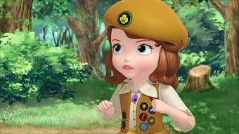 Scout un jour scout toujours!