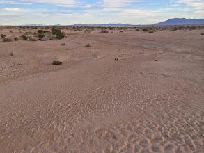 Photo: Dry lake