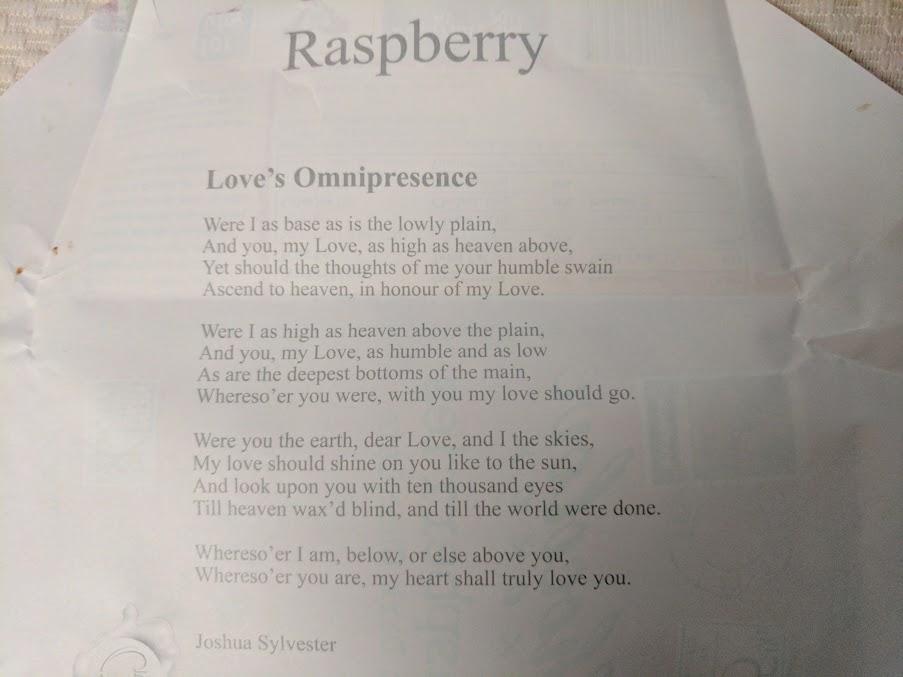 55% raspberry chocolove bar inside