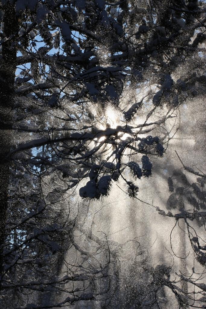 Esplosione di luce di Renato Fiorillo
