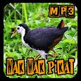 Wak Wak Pikat Full Mp3