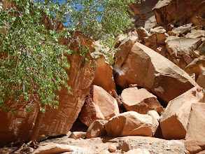 Photo: Huge rockpile blocking the canyon. There was a human-sized passage through :)