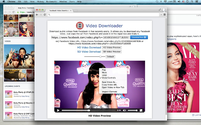 Video Downloader - Chrome Web Store