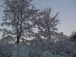 Photo: 2003 Sopukadun kauneutta (2)