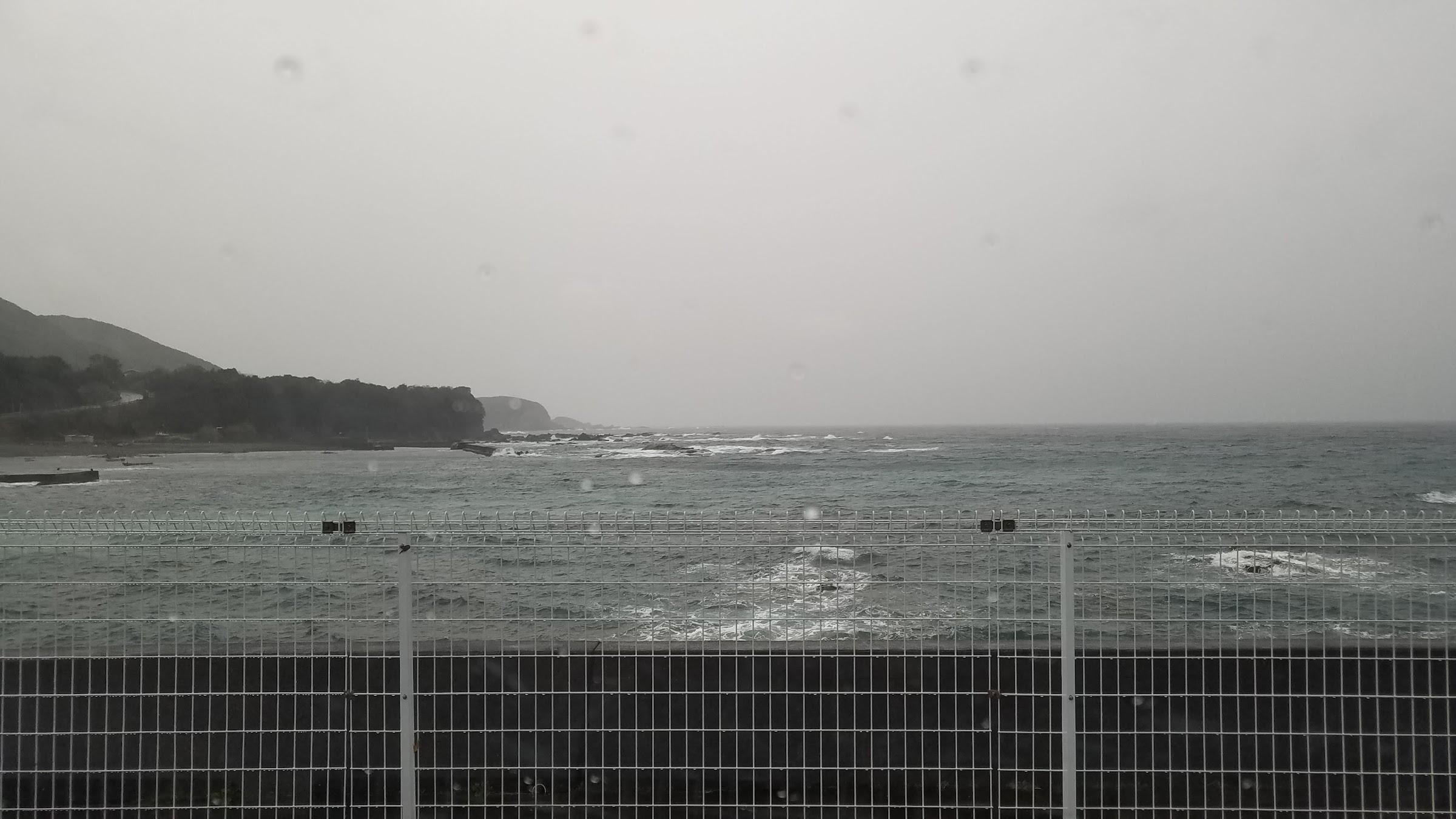 串本・荒れの内湾狙いでグレ3匹・白子もゲット