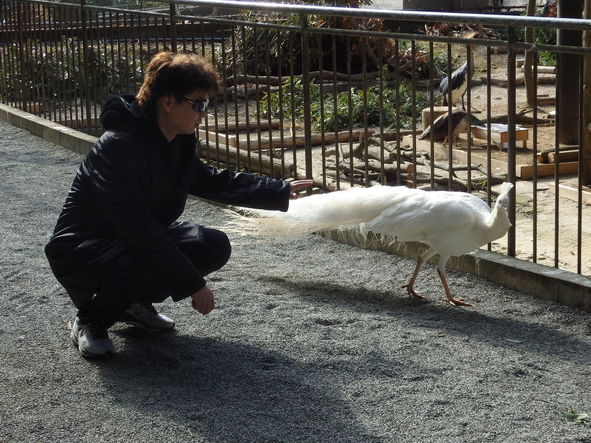 大牟田市動物園12