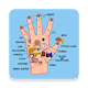 Download Master Acupressure - Su Jok For PC Windows and Mac