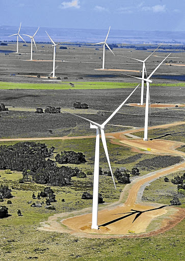 The Jeffreys Bay wind farm. Picture: The Herald