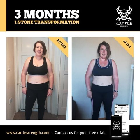 Cattle Strength Transformation 14