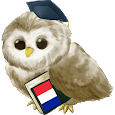 Learn French Free apk