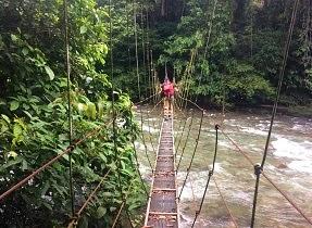 Headhunter's trail hanging bridge