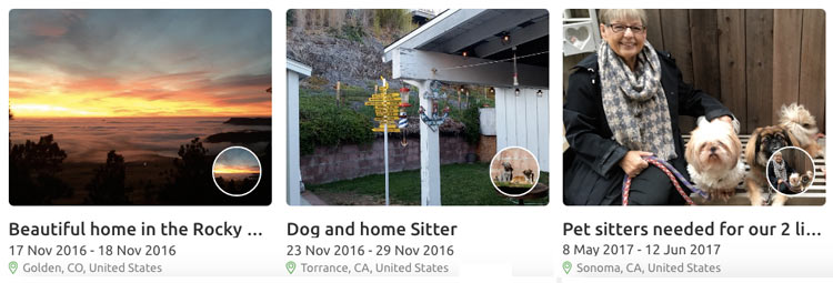 House sitters available on TrustedHouseSitters.com.