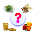 Herbs and Spices Quiz (Food Quiz Game) icon