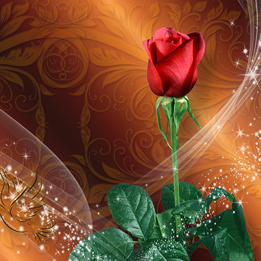 Roses Live Wallpaper 🌹 Rose Backgrounds