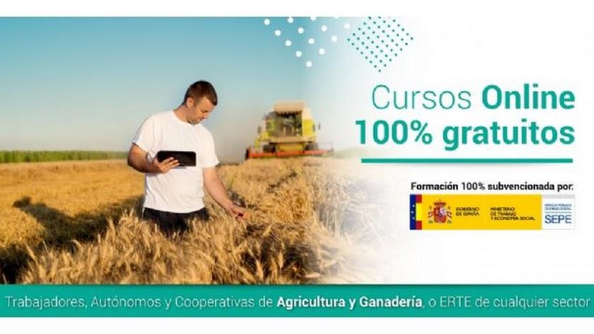 Cursos gratuitos del SEPE para cooperativas, agricultores y ganaderos.