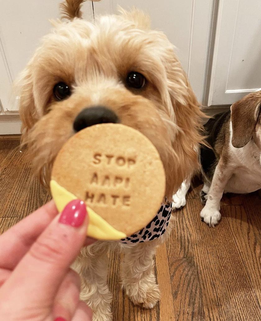 Caroline Billinson | Dog and Cookie | Instagram Pet Influencer
