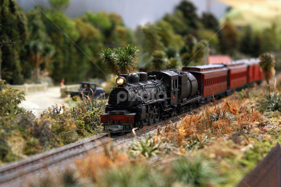 The Big Model Train Show 2012 by Phil Le Cren - Artistic Objects Toys ( 1:64 scale, the big model train show 2012, layout, nzr, one track minds, model railroad, nzr modular layout, toy, object )