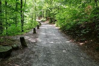Photo: Schöner Wanderweg