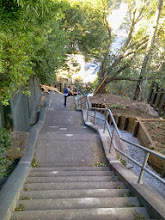 Photo: Jogger taking a break near the top of the Hidden Garden Steps site (16th Avenue, between Kirkham and Lawton streets in San Francisco's Inner Sunset District) late in the afternoon on October 4, 2013 after PG&E and San Francisco Department of Public Works employees finished a very busy day of onsite erosion-control, tree-trimming, and wire repair work. The 148-step Hidden Garden Steps ceramic-tile mosaic designed and created by artists Aileen Barr and Colette Crutcher will be installed on this site when erosion-control work is completed. For more information about this volunteer-driven community-based project supported by the San Francisco Parks Alliance, the San Francisco Department of Public Works Street Parks Program, and hundreds of individual donors, please visit our website at http://hiddengardensteps.org.