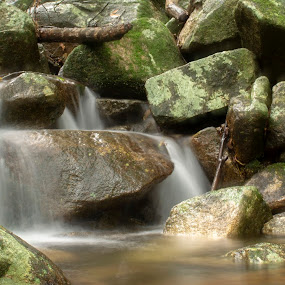 by Cheryl Larsen - Landscapes Waterscapes