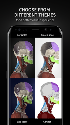 Anatomyka - Interactive 3D Human Anatomy 1.1.1 screenshots 8
