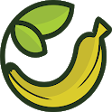Oliweb icon