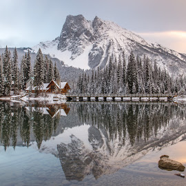 Perfect Reflection by Ken Leong - Landscapes Mountains & Hills ( mountain, reflection, tree, lake, water )