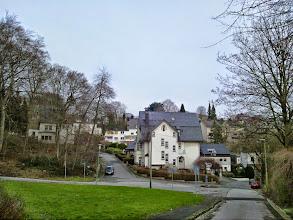 Photo: Im Kursbrink / In der Hülsche. Im Hintergrund: Auf dem Gelling.