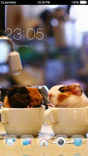 Cute Pet Theme C Launcher