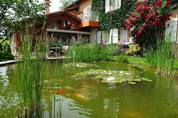 Taste the Alsace and the Beaujolais