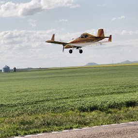 Crop duster by Stacy Swenson - Transportation Airplanes