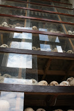 Photo: Year 2 Day 35 - Skulls on Shelves in the Stupa