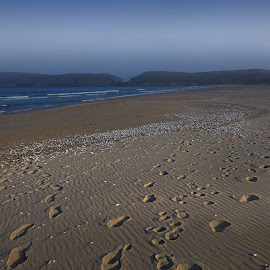 by Martin Hurwitz - Landscapes Beaches