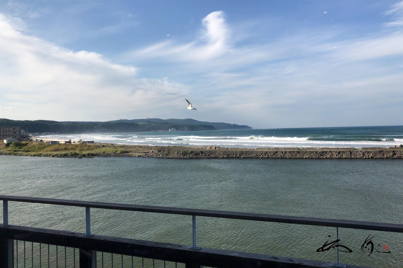 カモメ飛ぶオホーツク海を眺めながら。。。