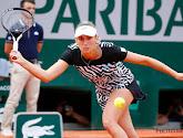 Elise Mertens stijgt naar de 22ste plaats op de wereldranglijst