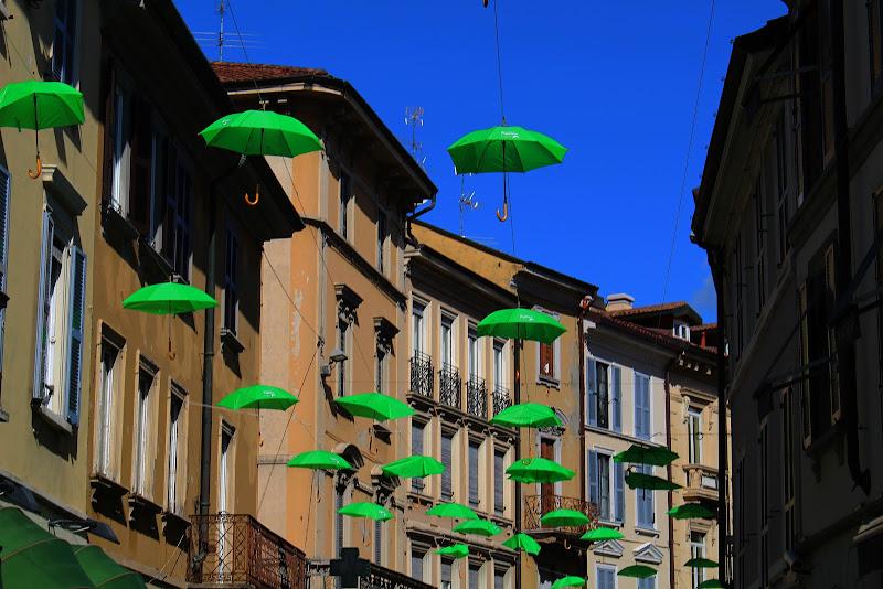 Under my Green Umbrellas di Carlotaia