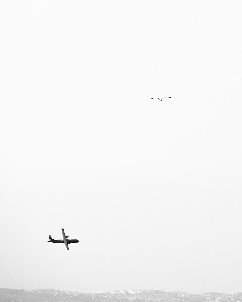 Contrasti aerei di maxrunner75